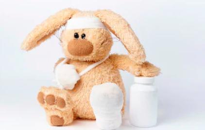 dier met verband en medicijnen animal care recruitment