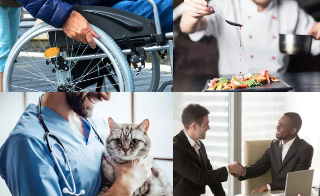 i-Cruit heeft vacatures voor it zorg veterinair animal care hospitality